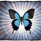 Butterfly by fantasytripp