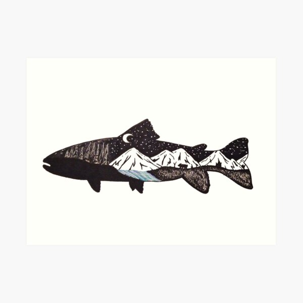 Mountain Trout Art Print