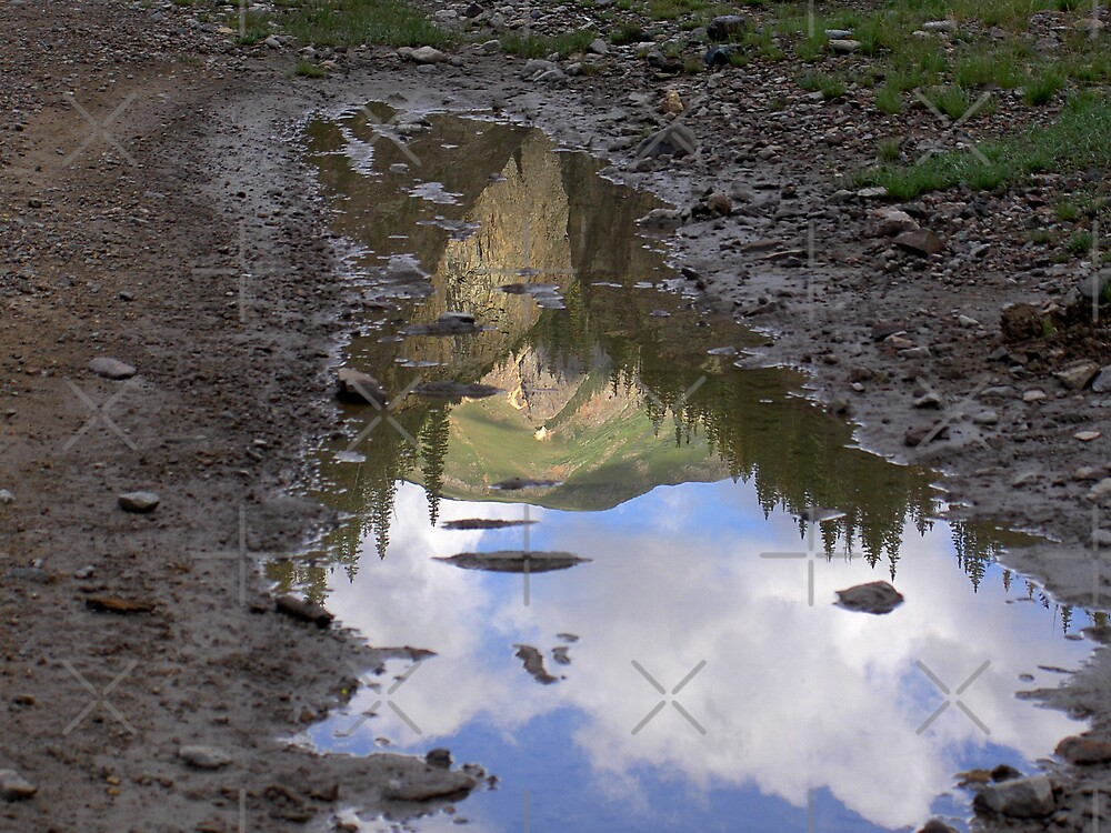 Mountain Reflection by CarolM