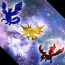 Legendary Galaxy Birds by Hannahchu