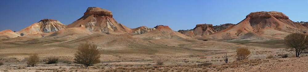 Painted Desert by Gordon Slater