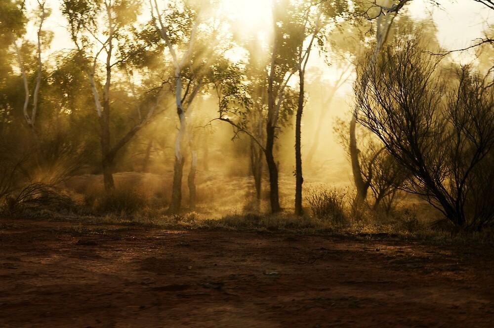 dust at dusk by Elli Schweizer