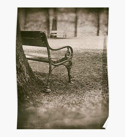Benches in park Poster