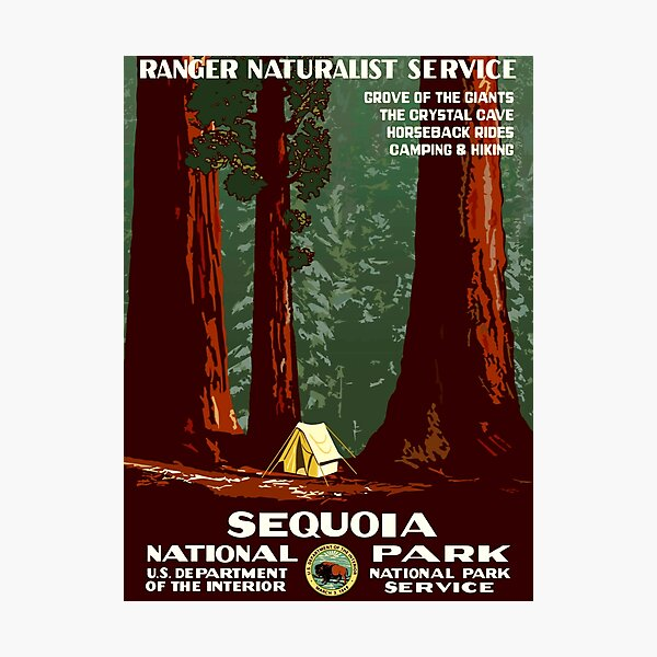 Sequoia National Park - WPA Vintage Poster Photographic Print