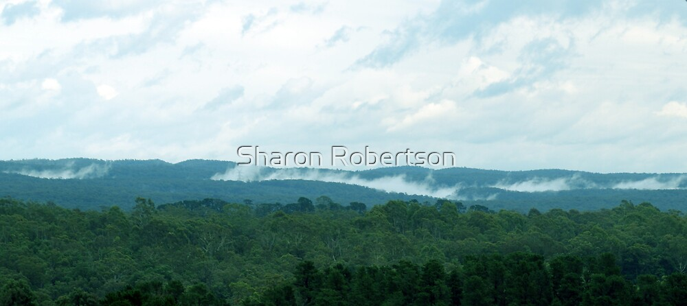 Morning in the Blue Mountains by Sharon Robertson