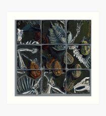 Haldane's Precambrian Puzzle (config.B):  true trilobite Art Print