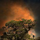 4556 by peter holme III