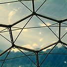Roof of Dome, Eden Project, Cornwall, UK by newbeltane