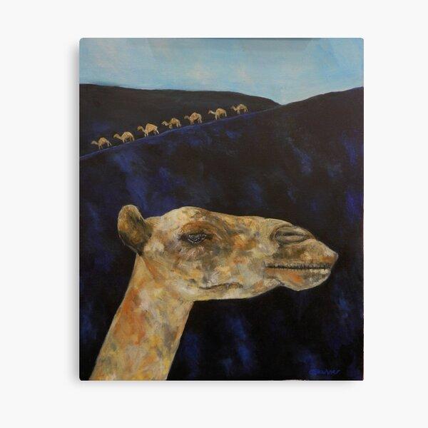 Memories of Lanzarote - camels on black sand Canvas Print