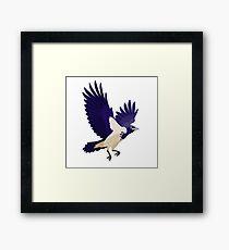 Raven on white background Framed Print