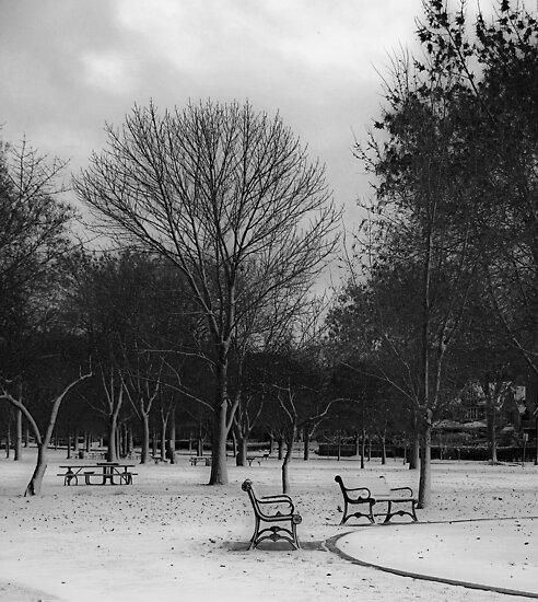 nobody's here by Angel Warda