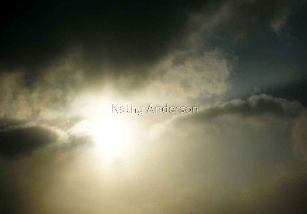 November Sol I by Kathy Anderson