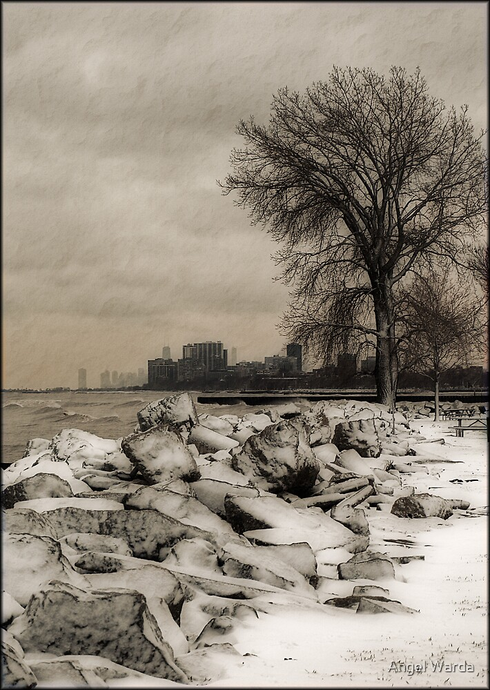 a cold winter's day by Angel Warda