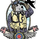 The Dogs of War: RAF fighter Pilot by Chris Jackson