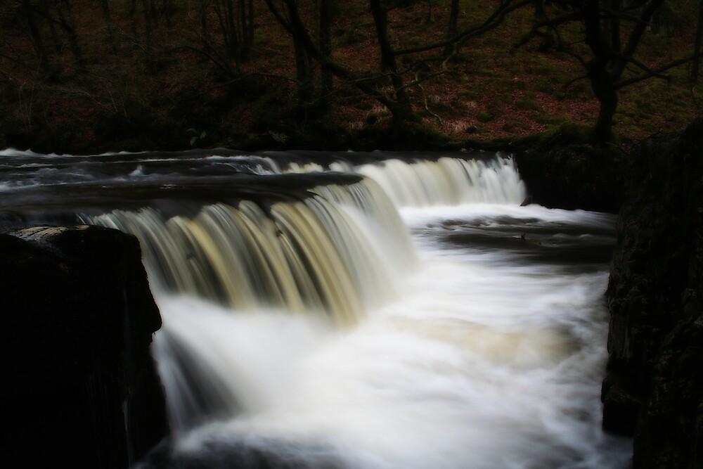 Horseshoe Waterfalls by Anthony Thomas