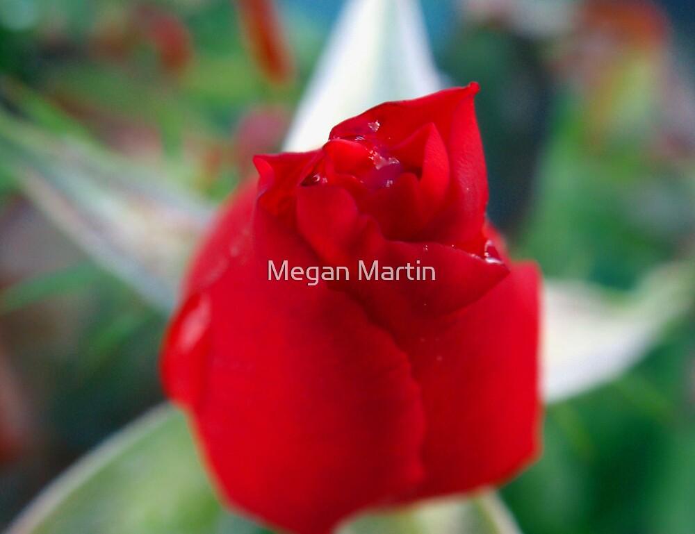 Loving You! by Megan Martin