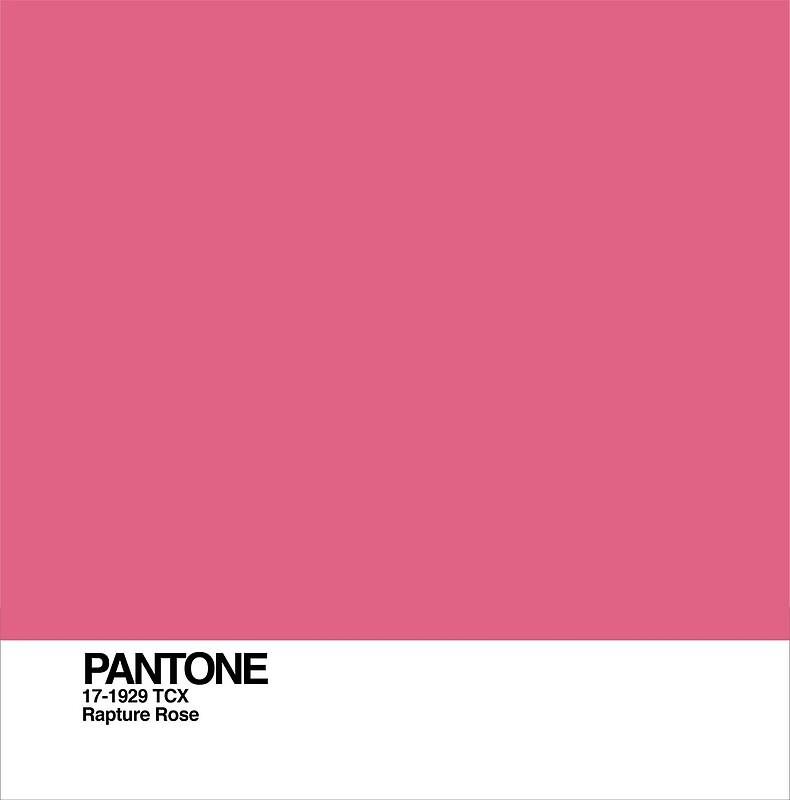 ผลการค้นหารูปภาพสำหรับ Rapture Rose : PANTONE 17-1929