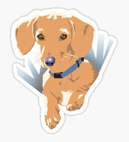 Pocket Puppy Blue aqua Sticker