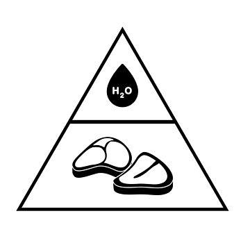 zerocarb food pyramid by koodburg