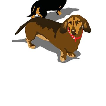 Dachshunds by aartytees