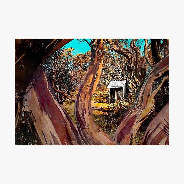 The Shack Outback Photographic Print
