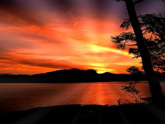 Sunrise Rays by Gail Bridger