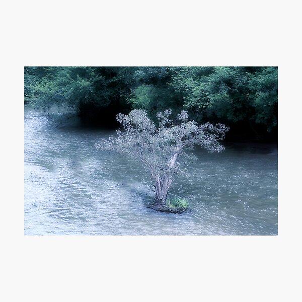 Faerie Island Photographic Print