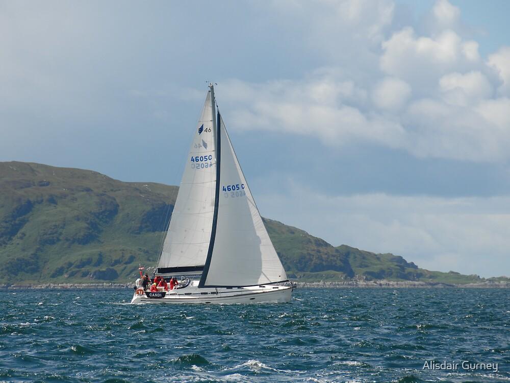 West Highland Week 2007 - CANDI by Alisdair Gurney