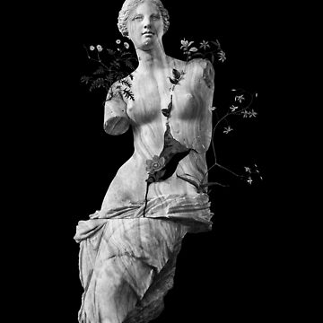 Venus, the classic marble beauty by 38Sunsets