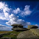 Bodmin Moor  by minifignick