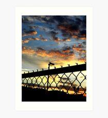 Fence Sunset Art Print