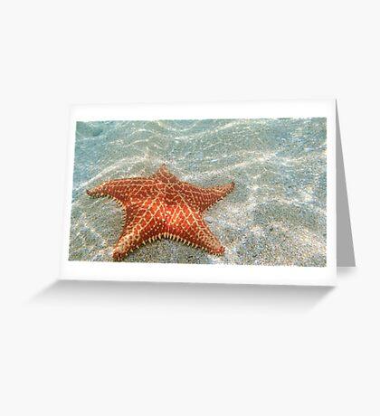 The Star Starfish Greeting Card