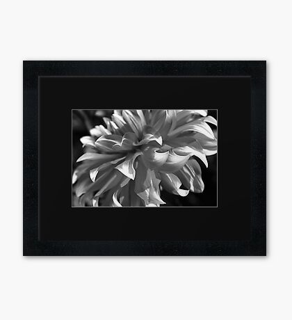 Dahlias Floating Dress Framed Print