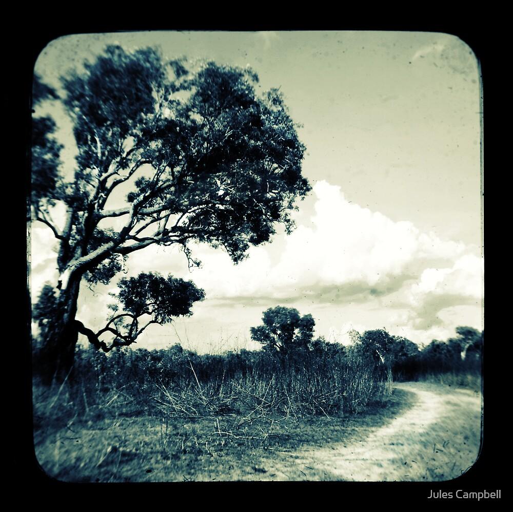 Marrakai Track by Jules Campbell