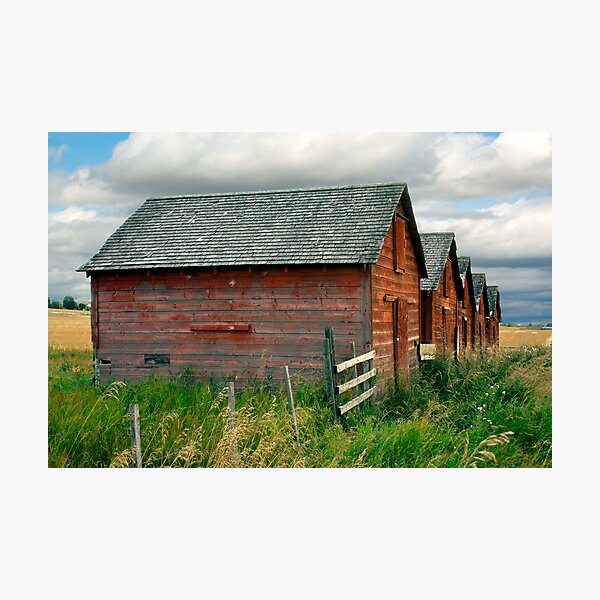 Red Barns Series 3 Photographic Print