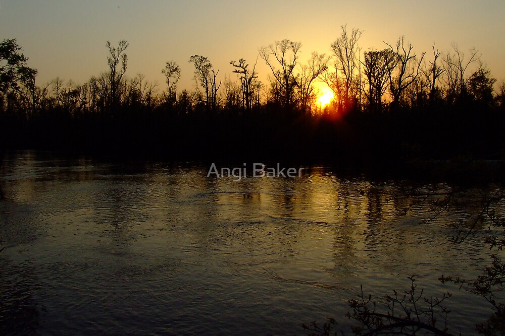 A Night To Remember by Angi Baker