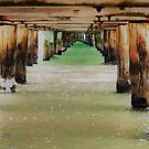 Underbelly by kimbaross