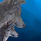 2 Wölfe /wolves Version10 von Doris Thomas