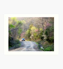 On The Road To Spring Art Print