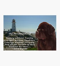 Newfoundland - Lord Byrons Poem Photographic Print