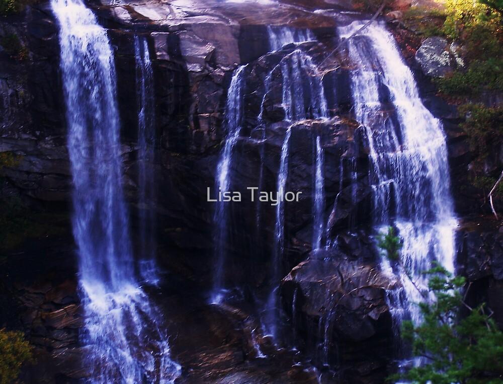 Black Rocks by Lisa Taylor