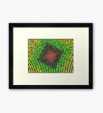coloured hay Framed Print