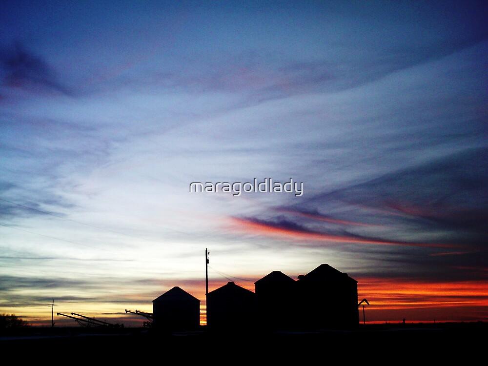 Silo Silhouette by maragoldlady