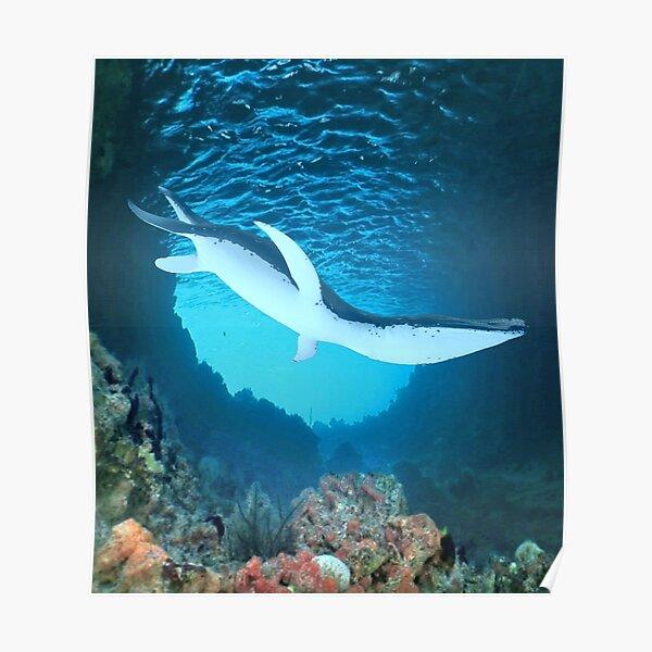 Poisson Monstre Horreur T-shirt créature marine marine profonde Lune étrange Ocean D031