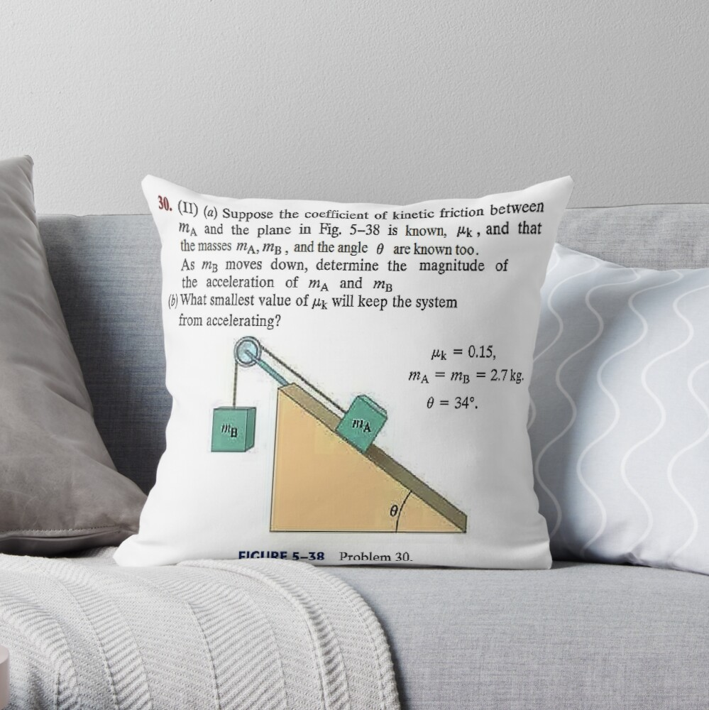 Physics problem: Suppose the coefficient of kinetic friction between the mass and the plane is known. #Physics #Education #PhysicsEducation,  Throw Pillow
