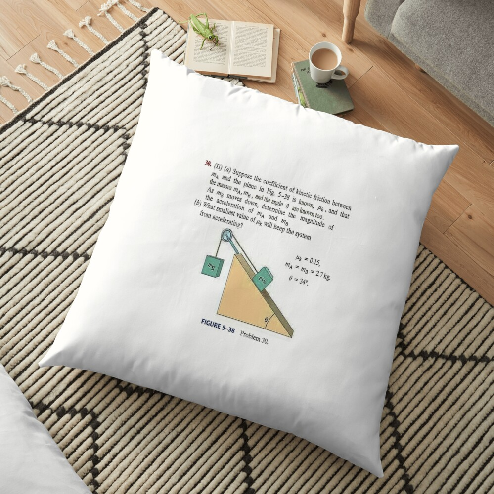Physics problem: Suppose the coefficient of kinetic friction between the mass and the plane is known. #Physics #Education #PhysicsEducation,  Floor Pillow