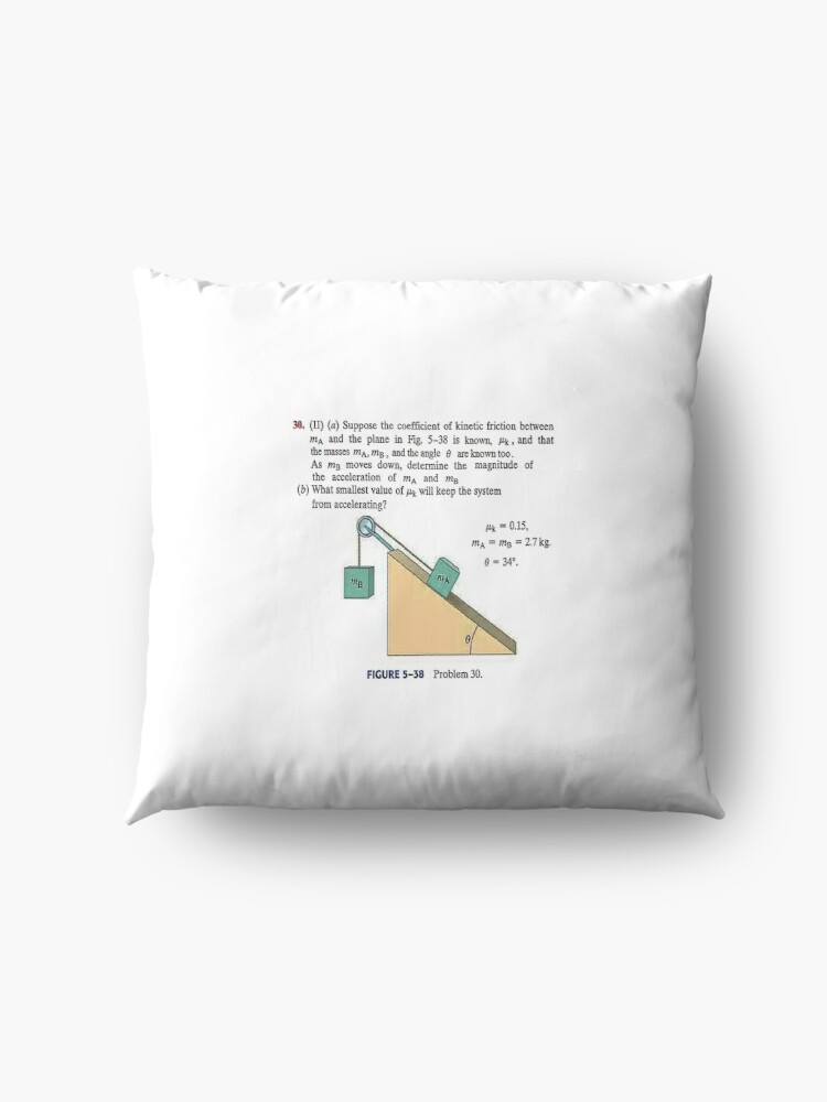 Alternate view of Physics problem: Suppose the coefficient of kinetic friction between the mass and the plane is known. #Physics #Education #PhysicsEducation,  Floor Pillow