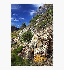 Mimosa Rocks Photographic Print