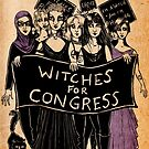 Witches For Congress! by Caviglia