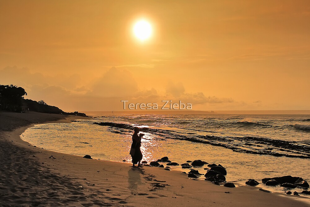 Ho'okipa Beach Sunset by Teresa Zieba